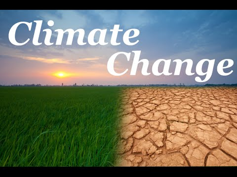 पर्यावरण व जलवायु परिवर्तन निर्देशालय बनेगा